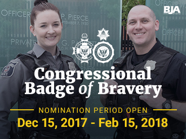 Congressional Badge of Bravery